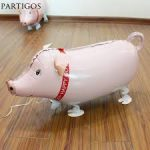pig walking pet